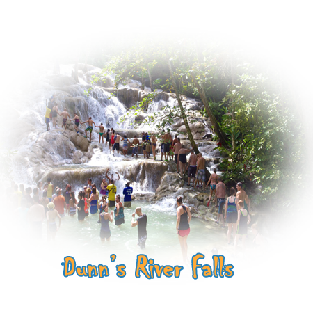 dunns rivers cruise excursions